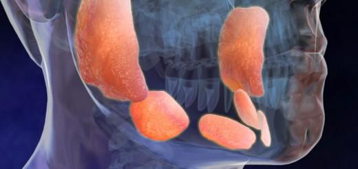 Выделятся ли сперма во время полового акта