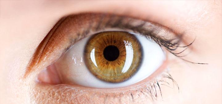 eye color and attractiveness essay